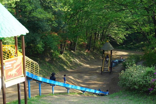 0429森林公園6