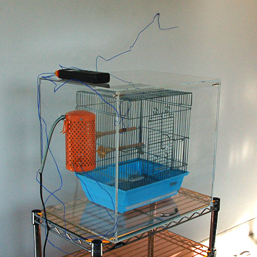 bird-cage-case2-test-1.jpg