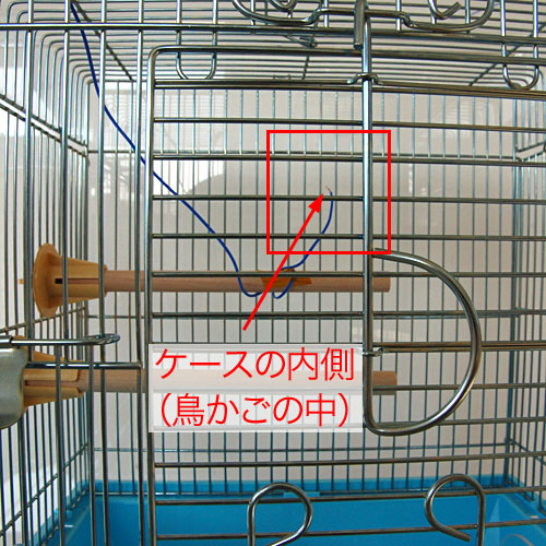 bird-cage-case2-test-2.jpg