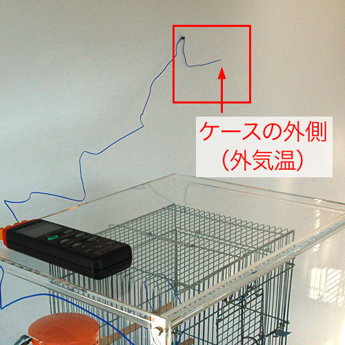 bird-cage-case2-test-4.jpg