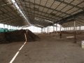 H27.2.9牛糞堆肥置き場(60t.50t)@IMG_4250