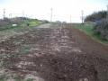 H27.3.25堆肥漉き込み前@IMG_4486