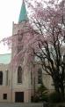 カトリック山手教会①