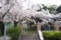 元町公園②