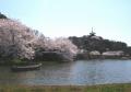 三溪園・大池と三重塔
