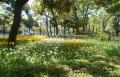横浜公園①