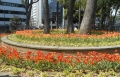 横浜公園②