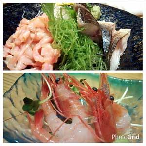 目黒日本海刺身