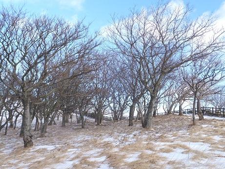 冬の地球岬2