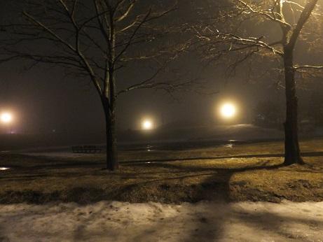 雪のない北公園