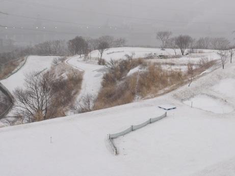 3月の雪4