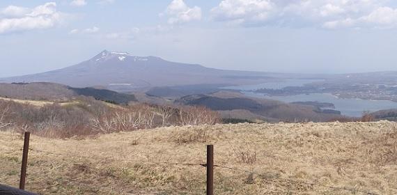 きじひき高原9