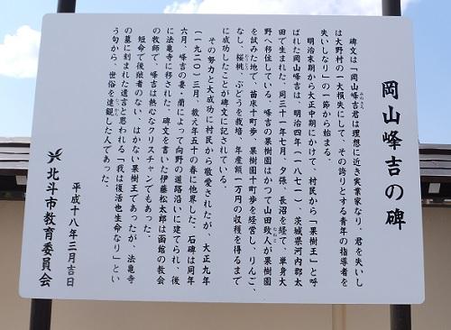 法亀寺の枝垂れ桜5