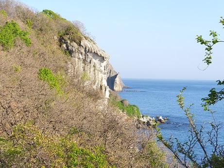 絵鞆岬A5