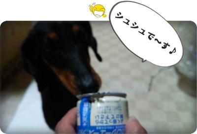 シュシュ缶詰DSC_1598