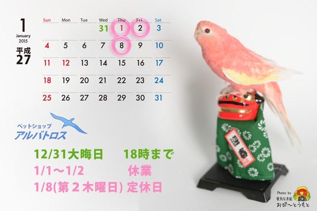 2015年1月カレンダー