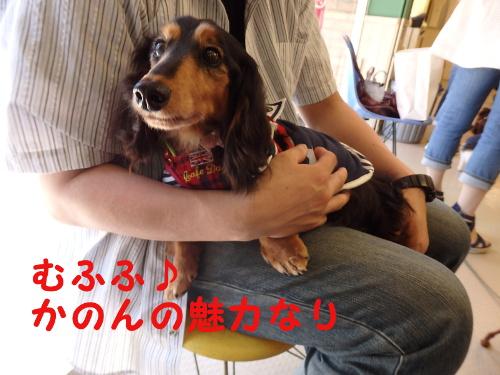 P5172946-1.jpg
