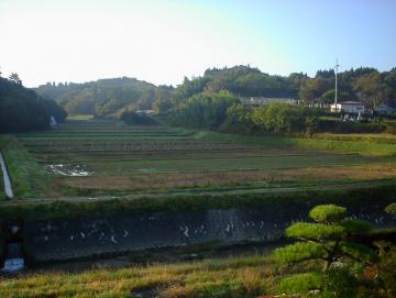 とみやから見た田圃の風景