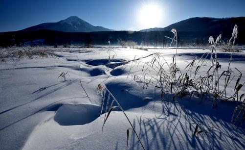 積雪の草原に浮かぶ蓼科山