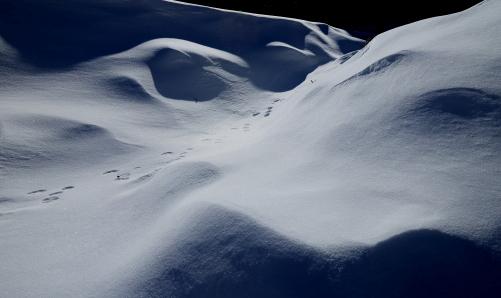 雪原自然の妙-2