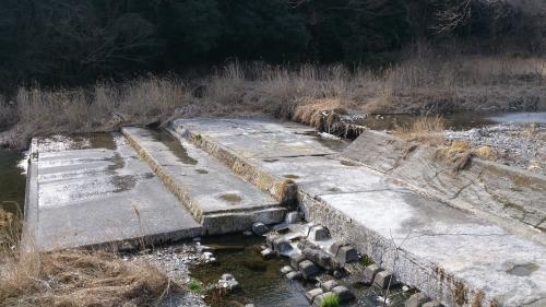 冬の川 (11)