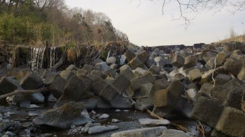 冬の川 (21)