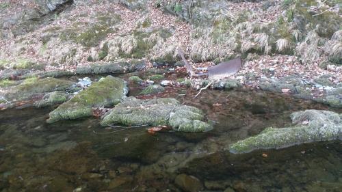 冬の川 (22)