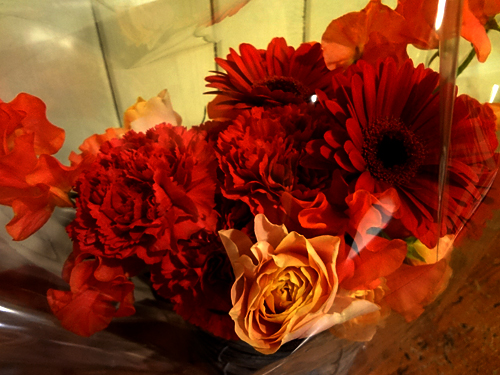 FlowerFrom2Ladies.jpg