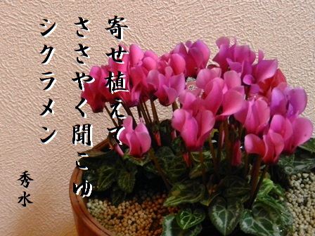shikuramen.jpg