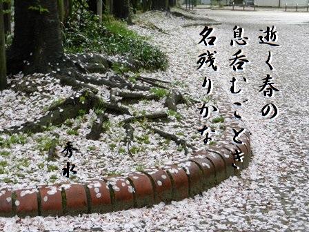 yukuharu01.jpg