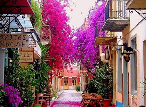 rail-europe-greece-walkway-beautiful-flowers.jpg