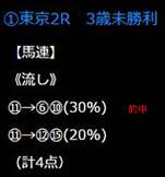 21_517_2.jpg