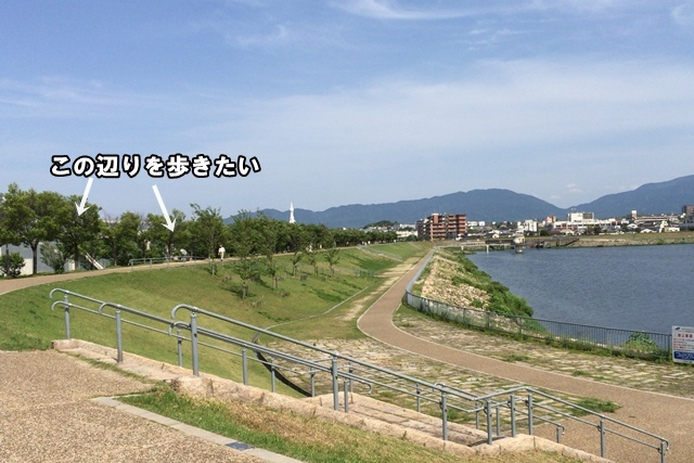 IMG_128520150521.jpg