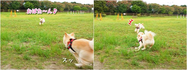 20150818_5.jpg