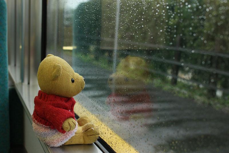 雨の車窓を 飯田線 150414