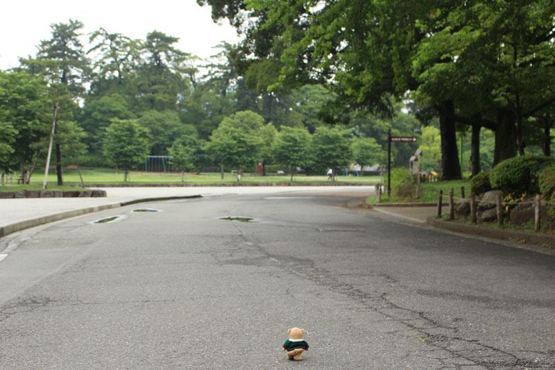 駿府城公園を散歩する