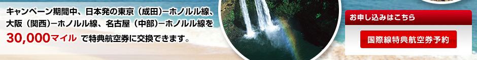 ハワイ線 国際線特典航空券 スーパーディスカウントマイルキャンペーン1