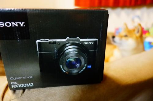 DSC00054 (1280x853)