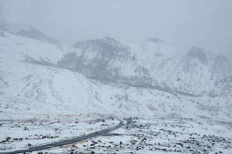2014最後のラクダ山