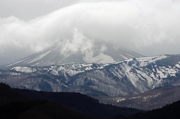 今日の雪うさぎ