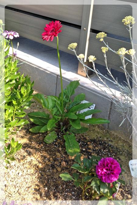2015-05-29 8 11 56_Fotor