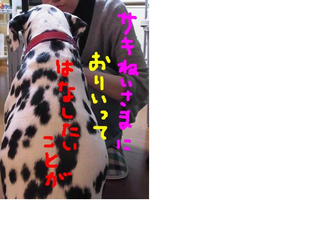 snap_atmkdesign_2015421445.jpg