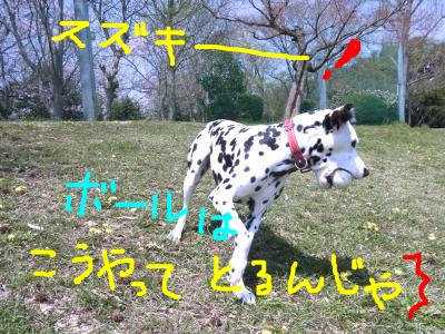 snap_atmkdesign_201545223930.jpg