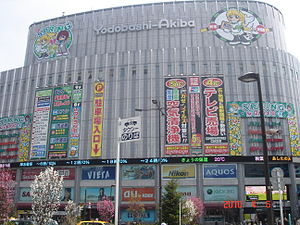 300px-Yodobashi-akiba2010.jpg