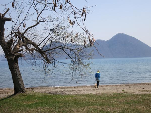 洞爺湖 茶太郎 湖畔 散歩