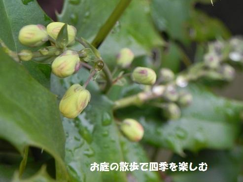 niwa93.jpg