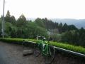 170503大正池和束側の茶畑ビューポイント