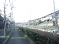 250207大住の坂を松井山手方面に上る