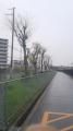150410雨の中を枚方市駅付近まで歩く