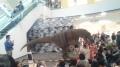 150426恐竜ショー